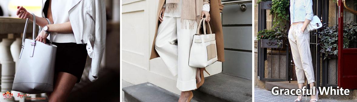 Elegant White 清純白色