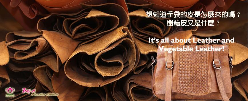 Vegetable Leather 樹糕皮及製作