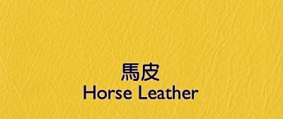 horse skin leather