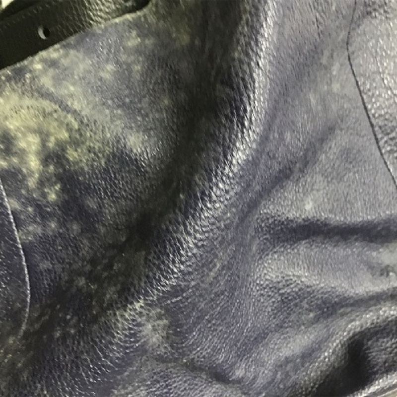 Mold is everywhere on the handbag